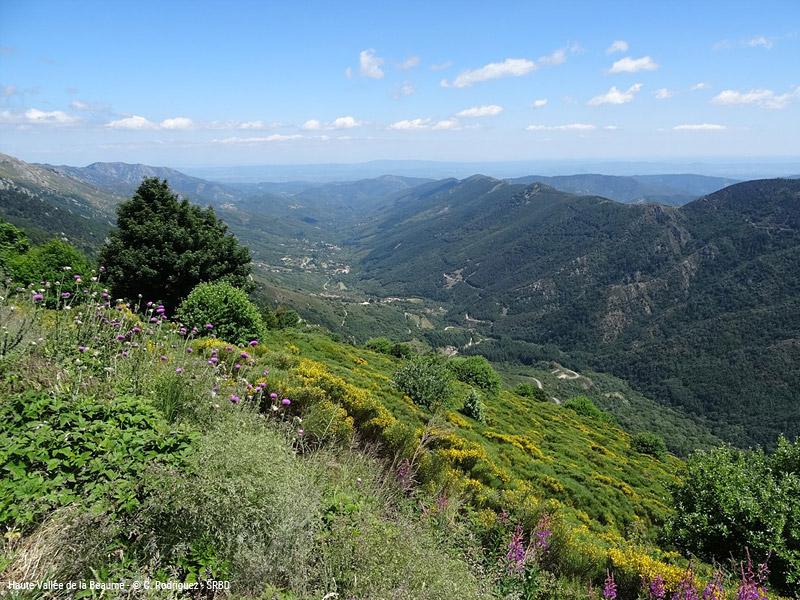 Haute vallée de La Beaume