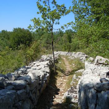 Chemin plateau des Gras, Labeaume